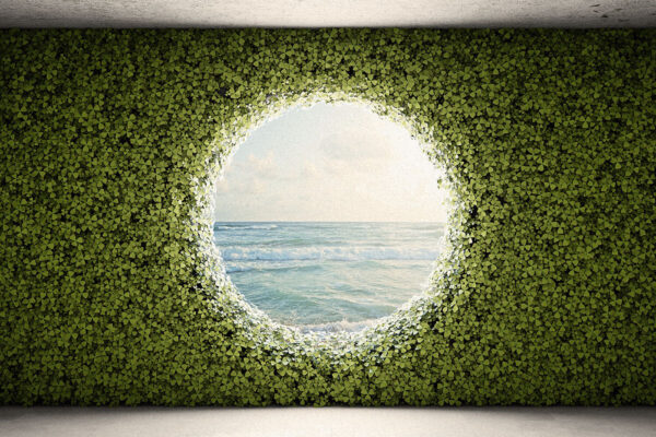Blog Bringing Intelligence Back To The Walled Garden